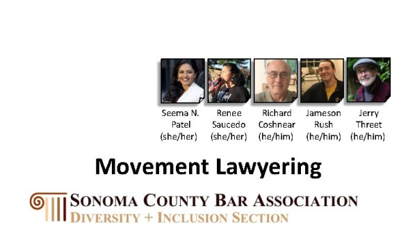 Movement Lawyering thumbnail